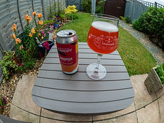 One for the ladies (far too fruity for me) Canopy's Passionfruit & Raspberry Gose Beer (4.5%) (Olympus OM-D EM1.2 & M.Zuiko 8mm Fisheye Prime) (1 of 1)