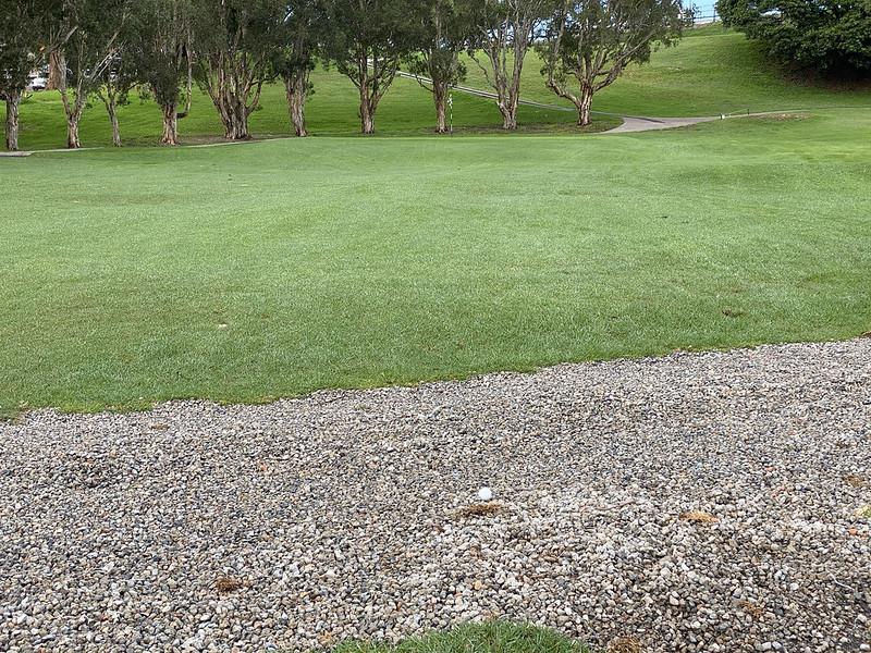 Cammeray Golf Club: hole 2 immovable hazard