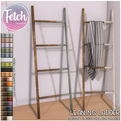 [Fetch] Leaning Ladder @ Saturday Sale!