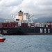 MSC Lily - MSC Shipping (IMO: 9704960)