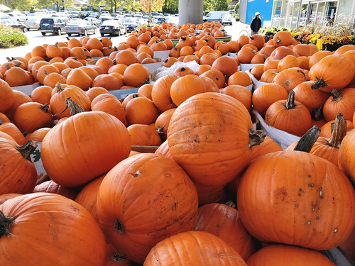 Piles of pumpkins | by Ruth and Dave