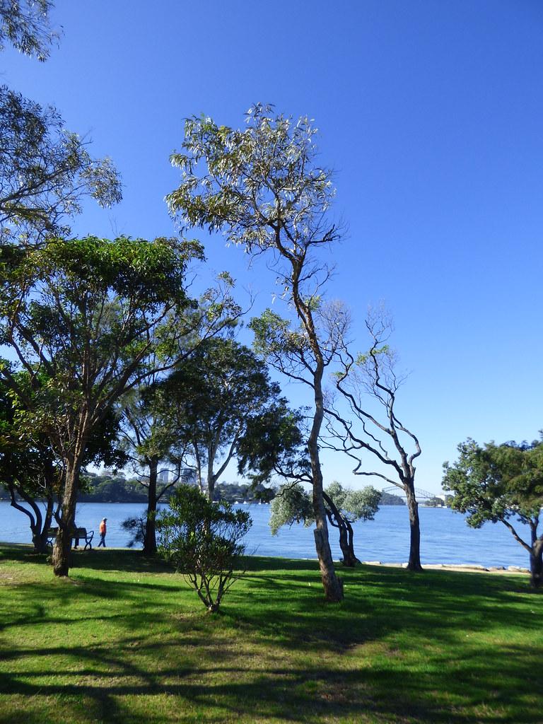 Clarkes Point Reserve, Woolwich, NSW, June 2020
