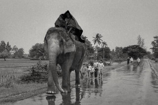Un jour de pluie sur la route, Kampot, Cambodge, août 2003. A rainy day on the road, Kampot, Cambodia, August 2003.