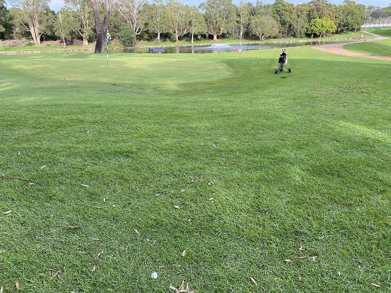Cammeray Golf Club: hole 6 green