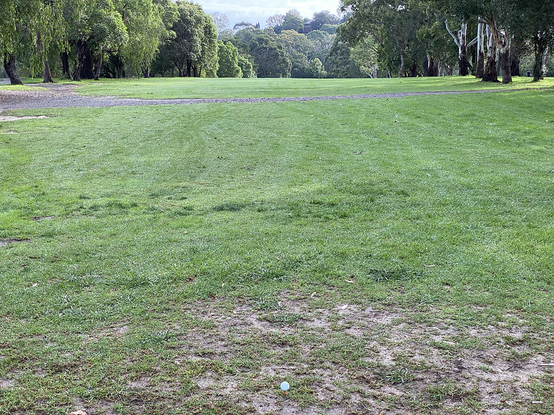 Cammeray Golf Club: hole 7 tee