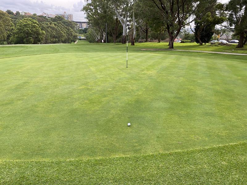 Cammeray Golf Club: hole 2 green