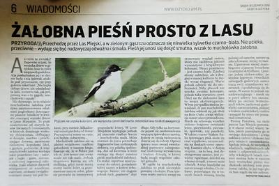 artykul Gazeta Giżycka 3