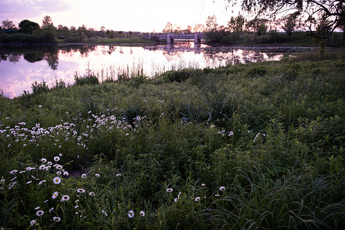nature outdoors spring afternoon june sunset water prairie 2020