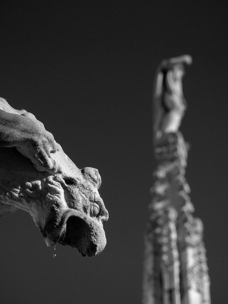 Hungry gargoyle