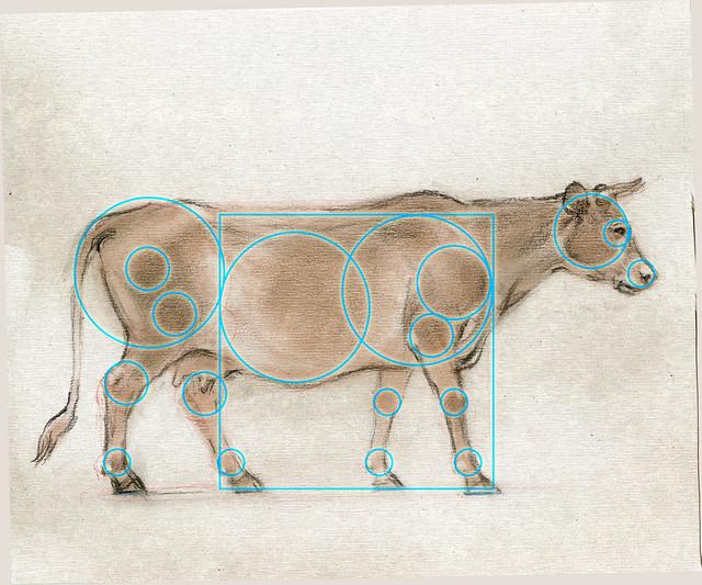 20200606_Cow_001_Rings