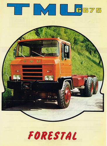 TMU_6675_forestal col·lecció Manuel del Carmen