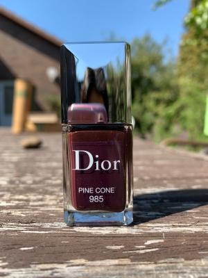 pine cone985