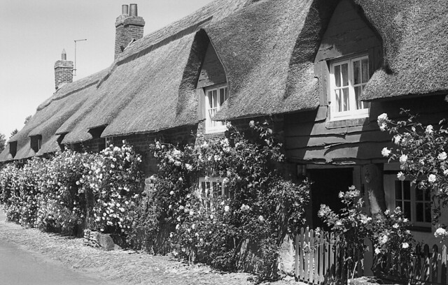 Thatched in Brockhall