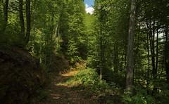 Chinkadze Mountain Trail, Georgia