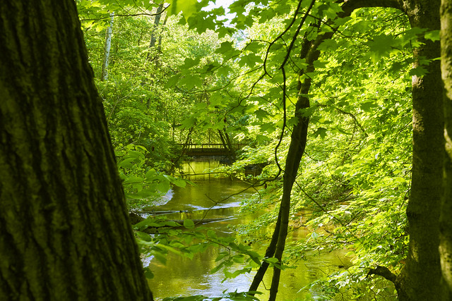 026671a_ The Footbridge In Aman Park