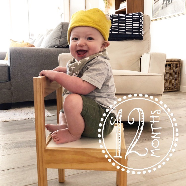 Wes 12 Months