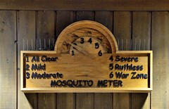 The Mosquito Meter in Congaree National Park!