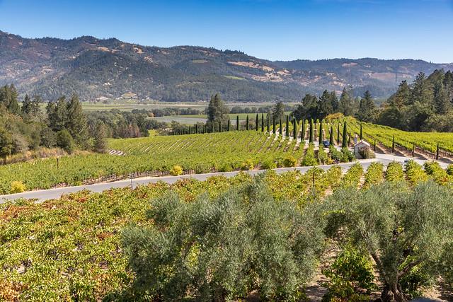 Armchair Traveling - Castello di Amorosa, Calistoga, California