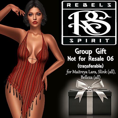 group gift not for resale 06 model
