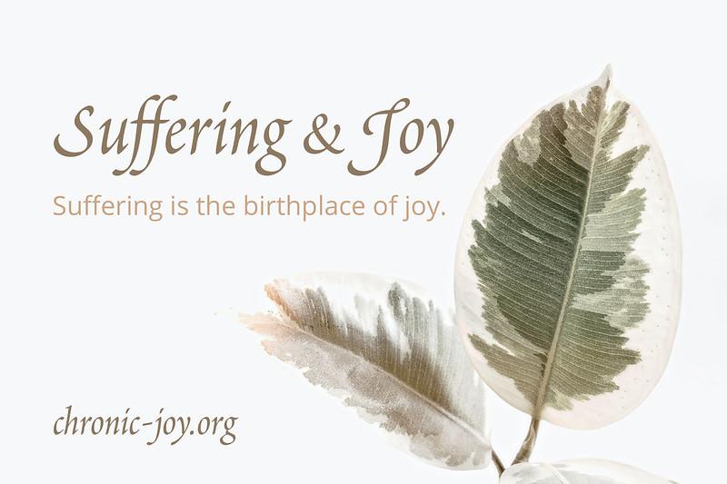 Suffering&JoyHeader2