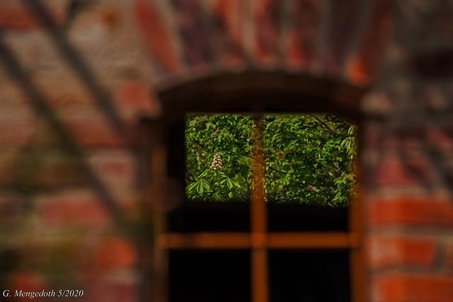 Der Blick durch das Fenster