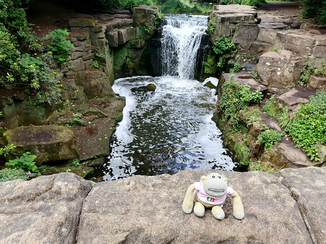 Monkey at the Waterfall
