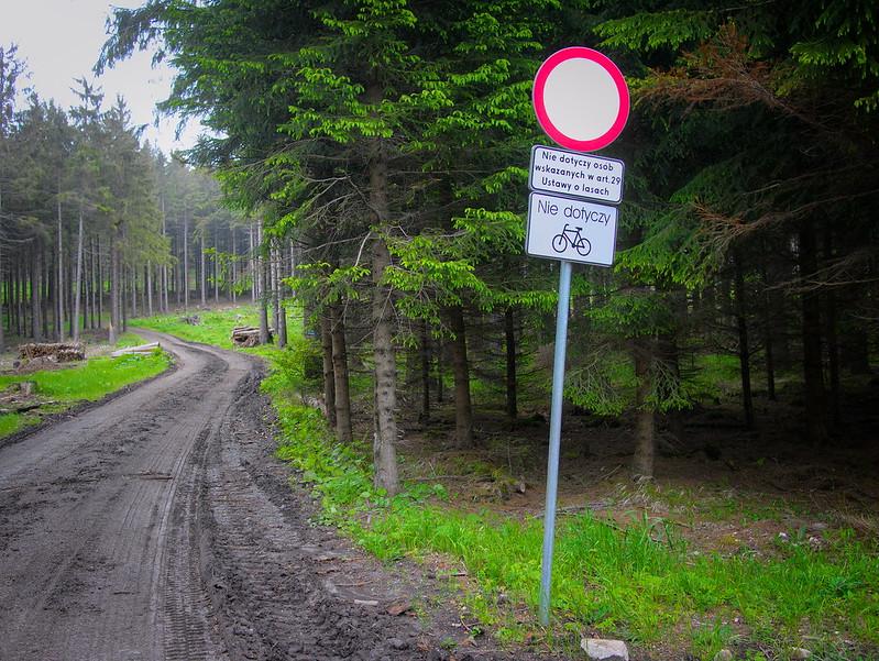zakaz pojazdów lesie