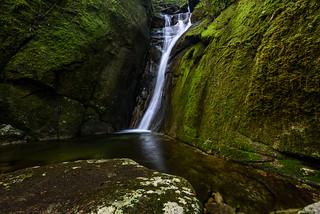 Mossy Falls-2551