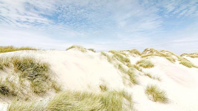 Atlantic Dunes  -  Osso da Baleia  -  N5588