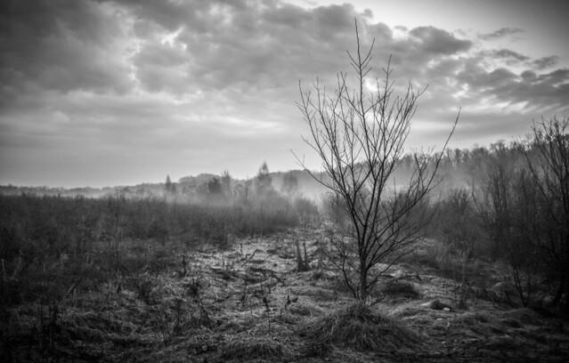 Черно-белый пейзаж.