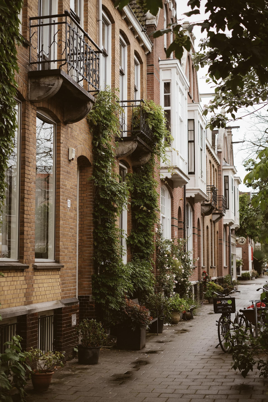Amsterdam East