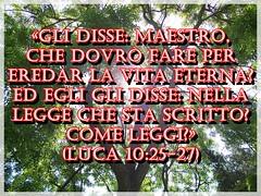 Attenersi a quello che è scritto nella Bibbia