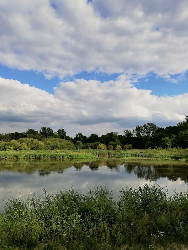 Naturaleza en Lovaina (1)