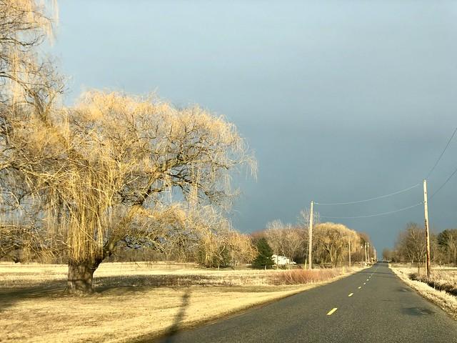 Dark Clouds, Golden Light (1)