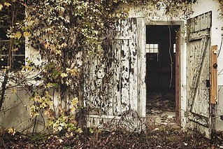 demolition-services-longwood-fl