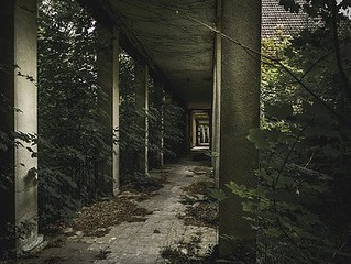 demolition-services-lake-panasoffkee-fl