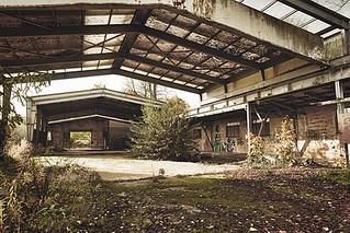 demolition-services-tavares-fl