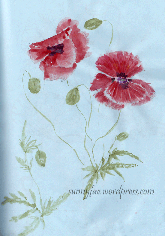 poppies, quick sketch