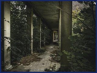 demolition-services-auburndale-fl