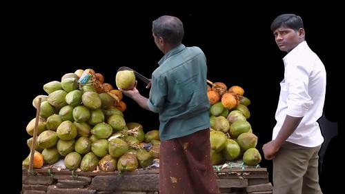 india tamilnadu madurai coconutman asienmanphotography