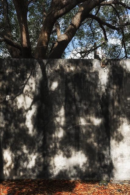 壁。畫~#179
