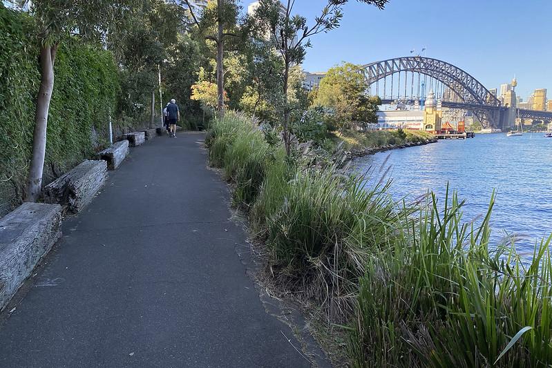 Lavender Bay walkway