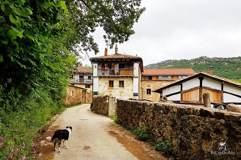 Road trip por el Ebro Escondido 23