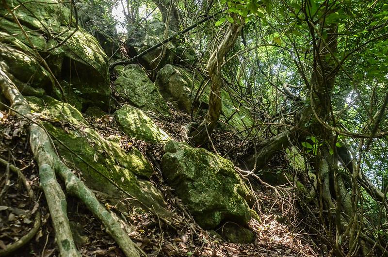 陡峭岩壁地形 (3)