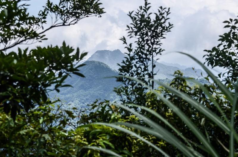 八卦力山山頂北面展望 (1)