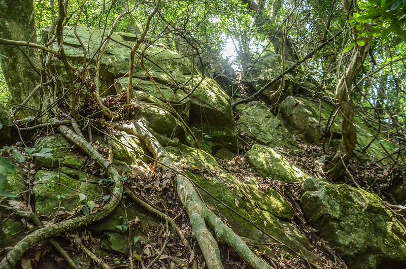 陡峭岩壁地形 (2)