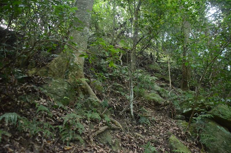 陡峭岩壁地形 (1)