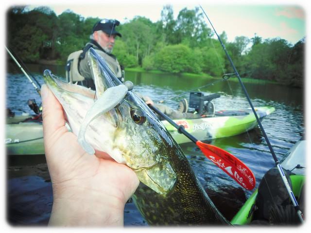 Fishing like a pro .