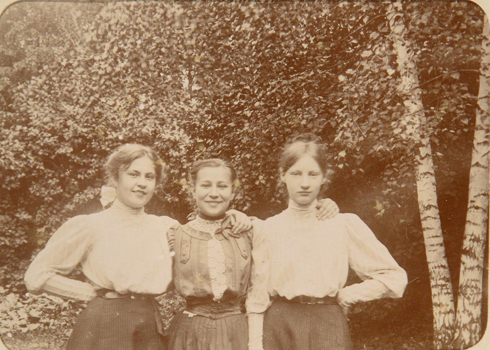 25. Три девушки на фоне берез