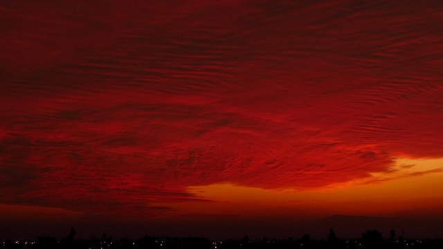 Under The Red Sky